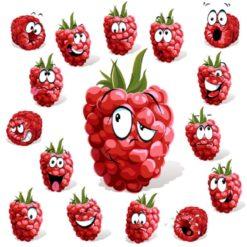 Fun Berry
